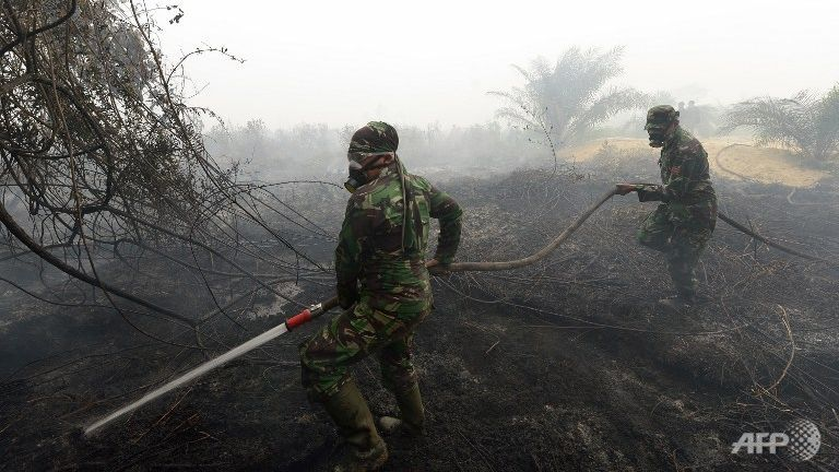 Things That You Do Not Know About Haze In Malaysia Caused by Indonesia.Indonesia, Which Has Repeatedly Promised To Stop The Illegal Fires, Has.... Things That You Do Not Know About Haze In Malaysia Caused by Indonesia.