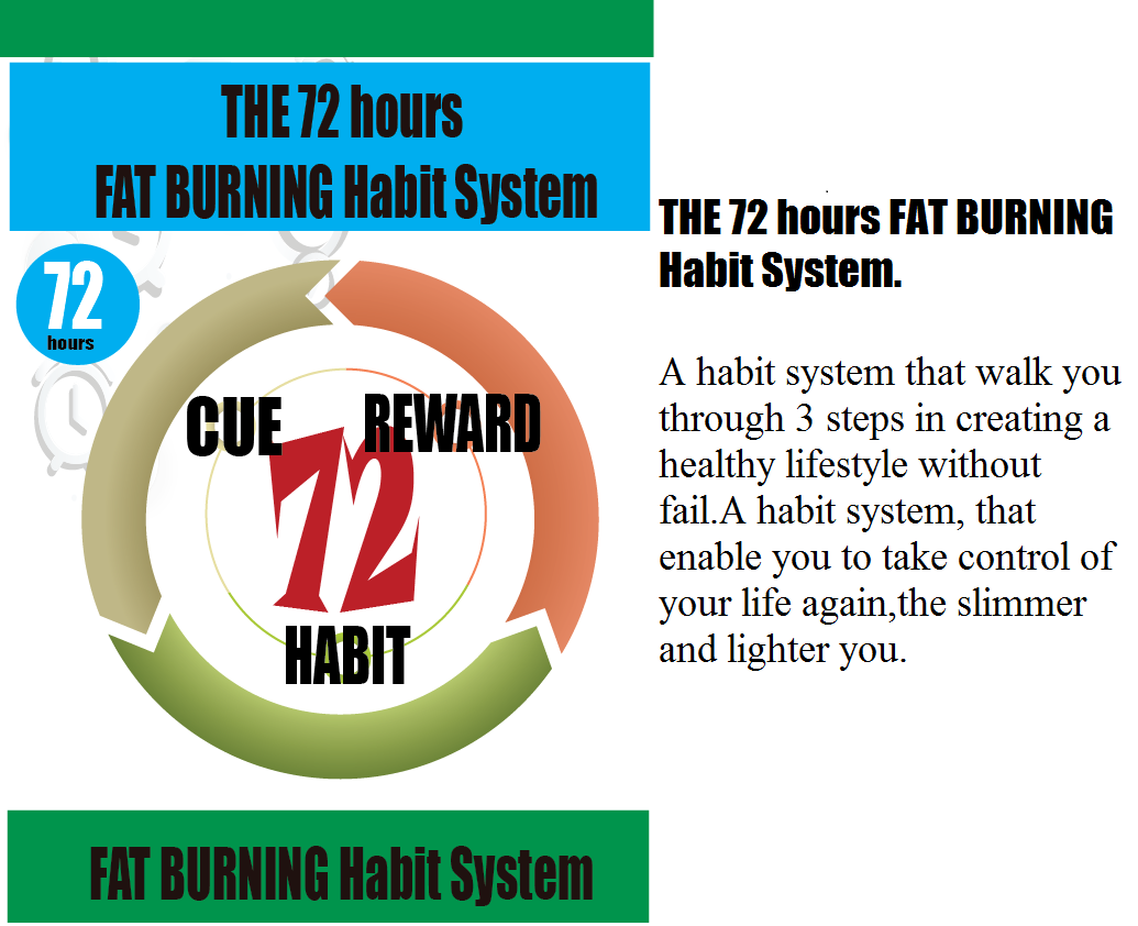 THE 72 hours FAT BURNING Habit System. A habit system that walk you through 3 steps in creating a healthy lifestyle without fail.A habit system that enable you to take control of your life again,the slimmer and lighter you.