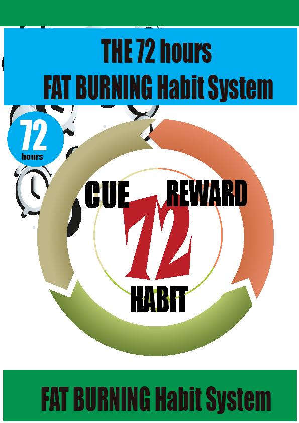 72-hours-fat-burning- HABITsystem