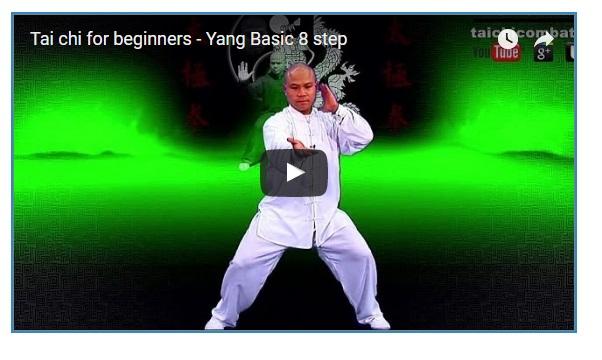 8 Beginner Move for Yang