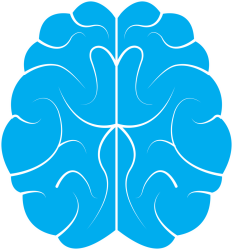 "The course ""Cognitive Psychology for Everyone"" is a great study tool for anyone that want to learn cognitive psychology in a fun and easy to understand way."